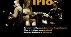 Taylor Ho Bynum Trio